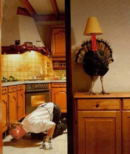 http://www.franksemails.com/pics/christmas_turkey.jpg